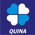 icon Quina